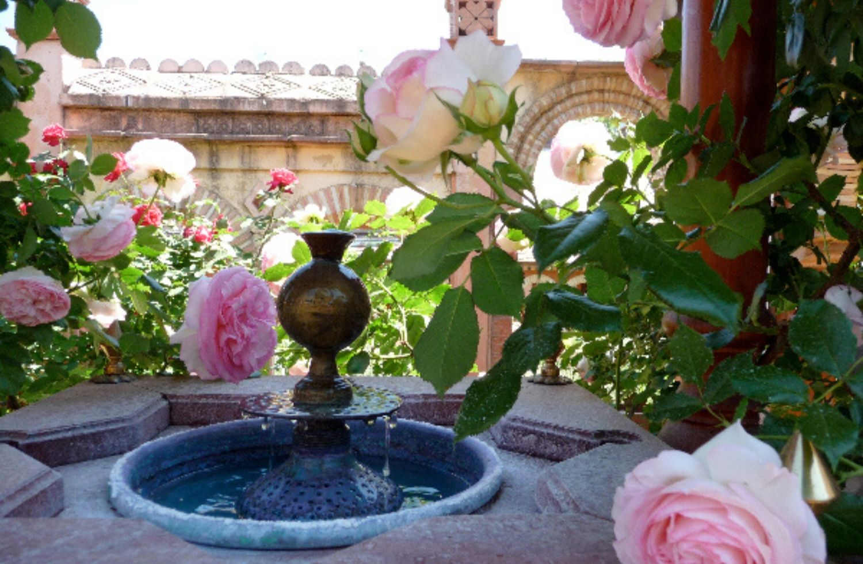 Des fontaines pour des enfants…